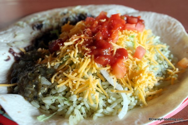 Vegetarian Burrito with toppings