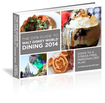 2014 dfb guide 3d cover