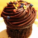 Review: Chocolate Caramel Cupcake at Roaring Fork in Disney's Wilderness Lodge Resort