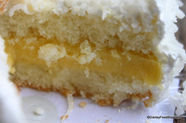 Coconut Cake -- SUPER Up Close