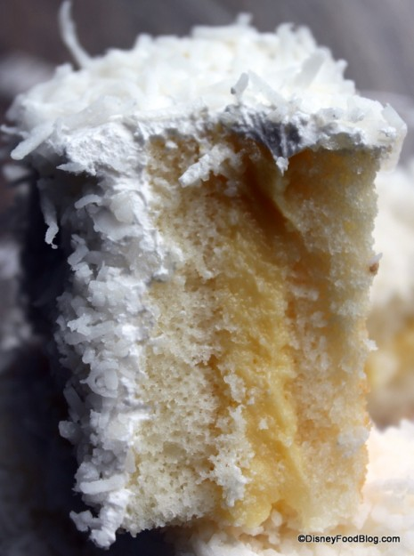 Coconut Cake -- Cross Section