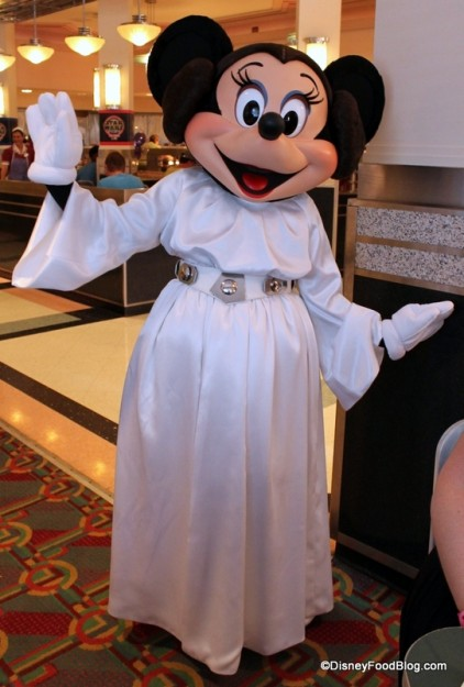 Princess Leia Minnie