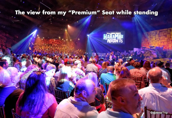 View Standing from the Back of Premium Seats