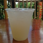 Review: Coconut-Lychee Lemonade at Drinkwallah in Disney's Animal Kingdom