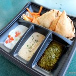 Review: New Samosas and Naan Dipping Safari at Namaste Café Food Truck in Downtown Disney