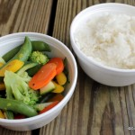 Review: Steamed Vegetables and Rice at Katsura Grill in Epcot's Japan Pavilion