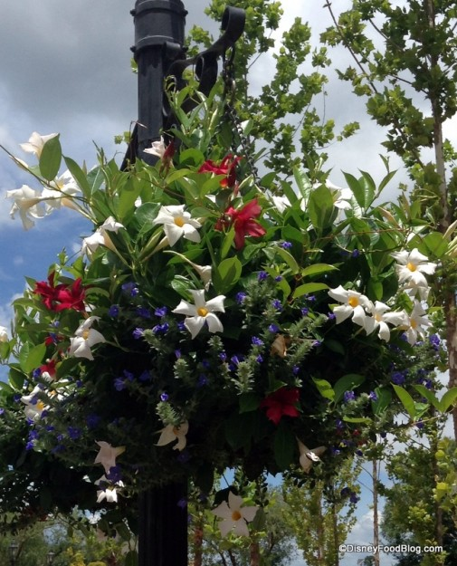 Red, White, and Blue flowers at the American Adventure Pavilion