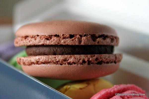 Chocolate Macaron -- Up Close