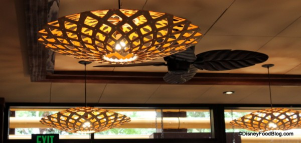 Lighting fixture and palm fan