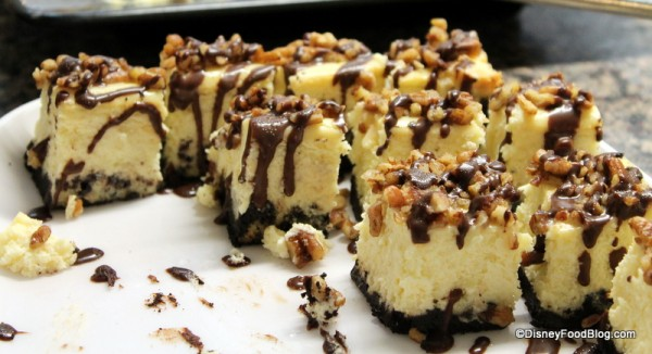 Turtle Cheesecake -- Up Close