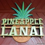 News! Pineapple Lanai Opens at Disney's Polynesian Village Resort (Dole Whip!!)