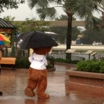 DFB Video: How to Survive Disney World Weather (and Hurricane Season)