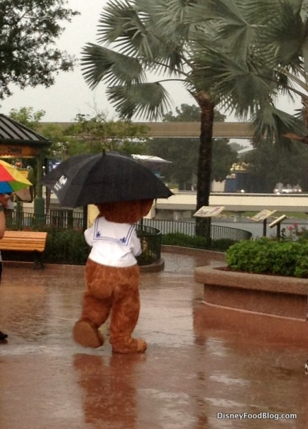 Rainy Day in Epcot