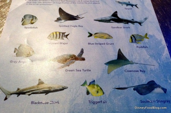 Fish Guide
