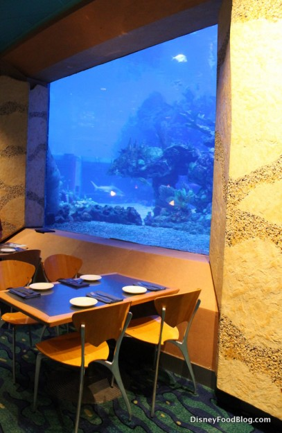 Coral Reef Seating in front of aquarium