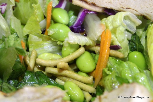 Edamame and crunchy noodles in salad
