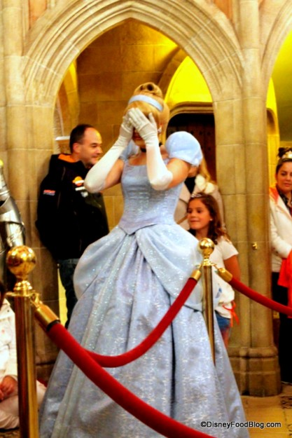 Hide 'n Seek with Cinderella!