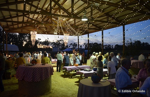 Field to Feast Inaugural Event at Long & Scott Farms