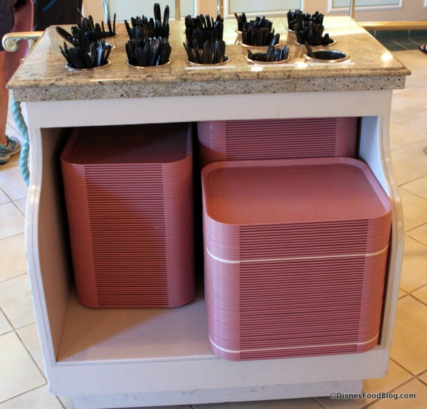 Trays and Plastic Tableware