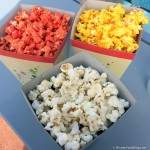 Review: Flavored Popcorn in Epcot