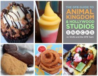 DFB Guide to Animal Kingdom and Hollywood Studios Snacks  DFB Store - Mozilla Firefox 7212014 30004 PM