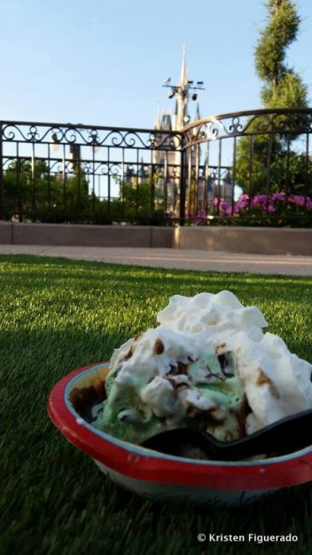 Ice Cream in the New Garden at Magic Kingdom