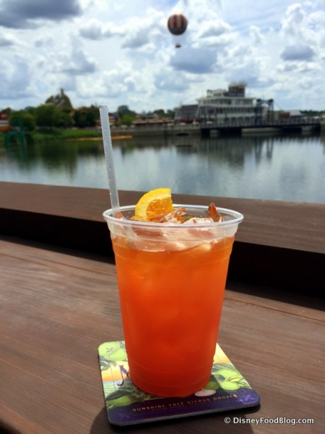 Rum Runner with a View