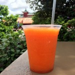 Review: Green Tea Plum Slush at Joy of Tea in Epcot's China Pavilion