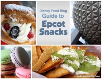 Epcot snacks 2015 cover flat macaron