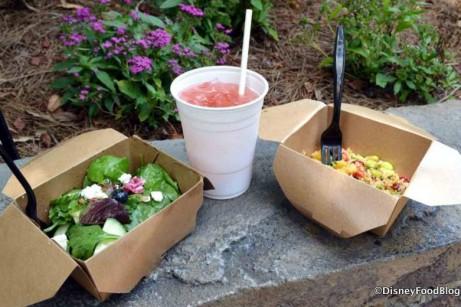 Farmers Salad, Cucumber-Mint Pomegranate Lemonade, and Trek Salad