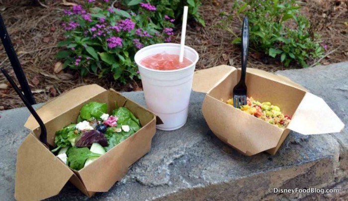 Farmers Salad, Cucumber-Mint Pomegranate Lemonade, and Trek Salad