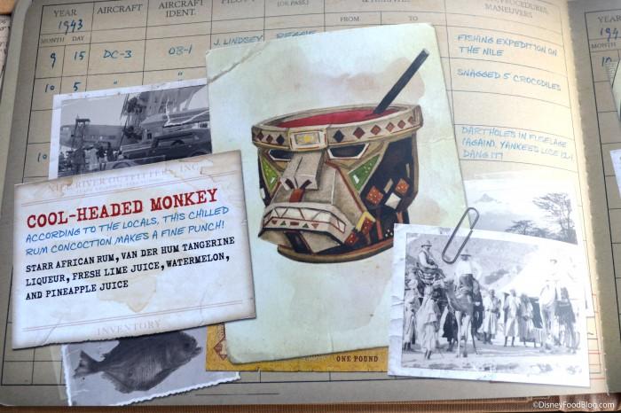 Pilot's Log Book: Africa