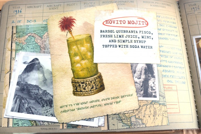Pilot Log Book: South America