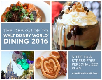 2016 book cover dfb guide