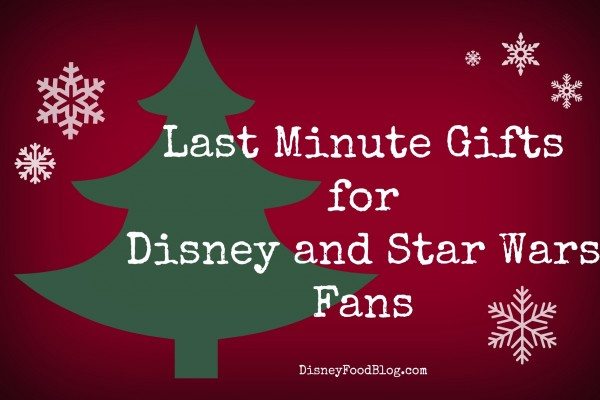 Disney Stuff They Want — Just in Time for Christmas!