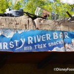 First Look AND Review: Thirsty River Bar and Trek Snacks in Disney's Animal Kingdom