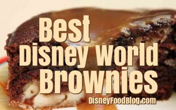 Best Disney World Brownies
