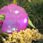 News: Light-Up Lotus Popcorn Bucket Coming to Animal Kingdom and Updated Anniversary Buckets in Disneyland