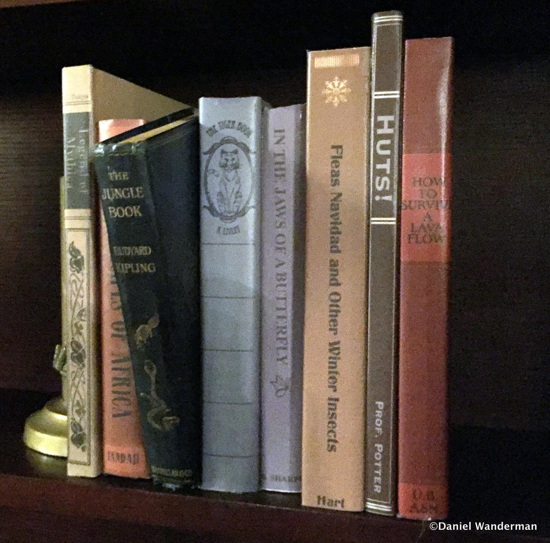 100 fake books for bookshelves online buy wholesale simple