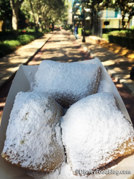 Beignets at Port Orleans French Quarter!