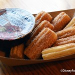 Review: Bite-Size Churros from Pecos Bill Tall Tale Inn and Cafe in Magic Kingdom