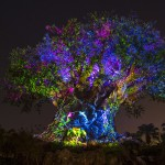 News! Tiffins and Jungle Book Dining Package Reservations Open May 21st