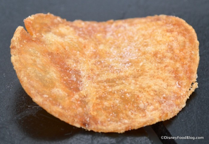 Closeup on Salt & Vinegar Chip