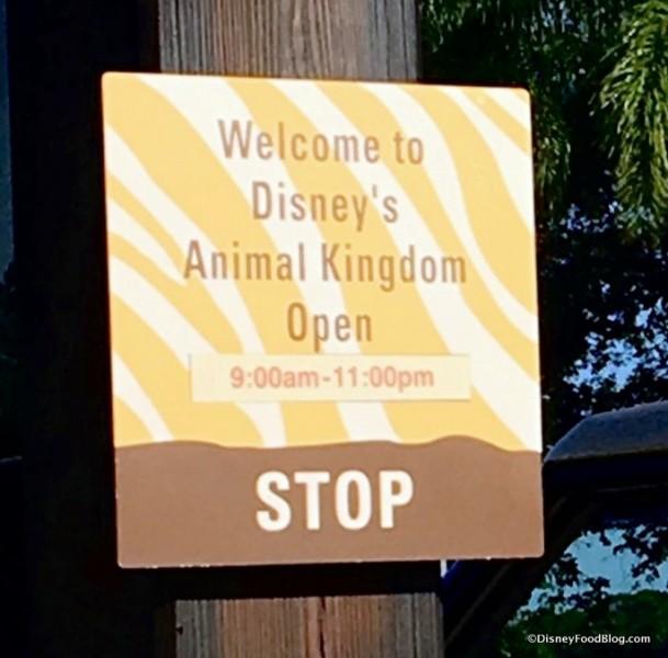 Disney's Animal Kingdom... open until 11:00 pm!
