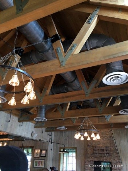 Ceiling and Lighting Fixtures