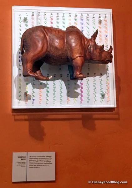 Rhino and Code