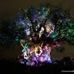 Photo Tour and Review: Sights — and Snacks — in Animal Kingdom AT NIGHT!