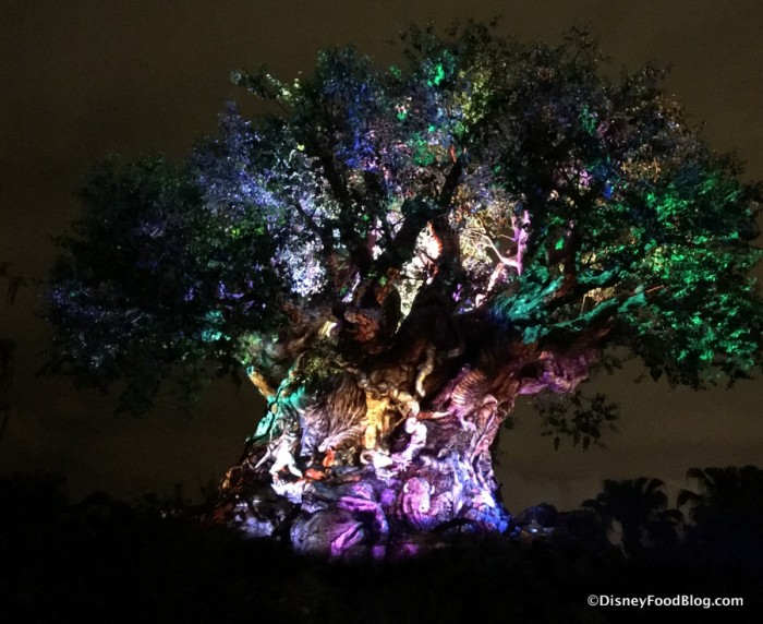 Tree of Life Awakening at Night