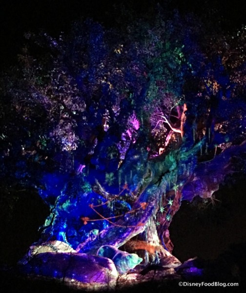 The Tree of Life at Night