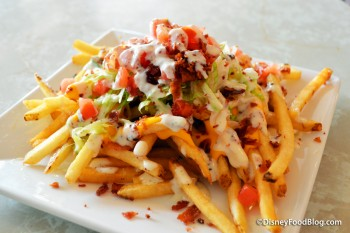 Plaza Loaded Fries